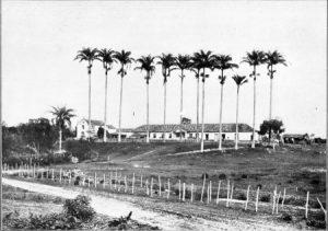 Fazenda do Rosário em 1911. Seu nome deve ter sido a razão do nome original da estação.
